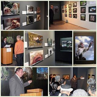 山ノ内町-museum-スノーモンキー写真展、コンテスト表彰式(12/18)