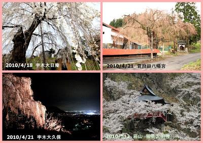山ノ内町-yamanouchi-桜前線の北上が待ち遠しい今日この頃