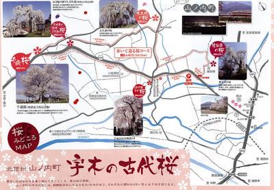 山ノ内町-tourismwork-宇木の古代桜マップ