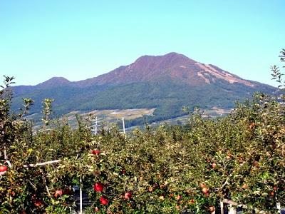 -loco, farm-山ノ内町は秋本番! 紅葉と果物!!