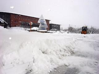 山ノ内町-yamanouchi-山ノ内町は大雪です・・・・太郎を眠らせ