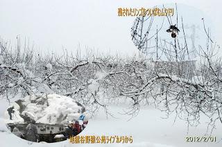 山ノ内町-yamanouchi-雪降りが続きます・・・明日は節分