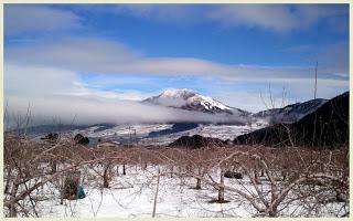 山ノ内町-yamanouchi-山ノ内町にも春の気配がしてきました