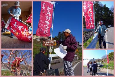 -event-「宇木の古代桜」のイベント準備