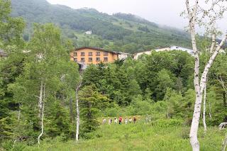 -scenery-夏を楽しむ・・・・山ノ内町志賀高原の自然