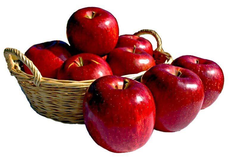 山ノ内町りんご-agriinfo-りんご