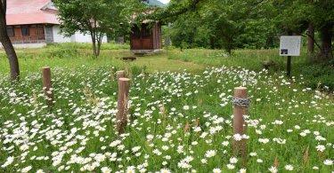 須賀川, ユネスコエコパーク-history-須賀川で伝承される里地里山の民話