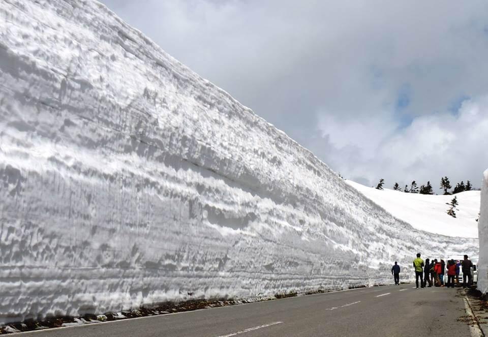 志賀高原, ユネスコエコパーク-column-雪に学ぶこと