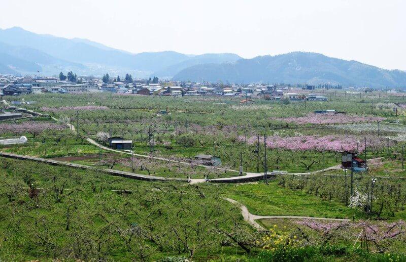 山ノ内町ユネスコエコパーク-yamanouchi-里の風景
