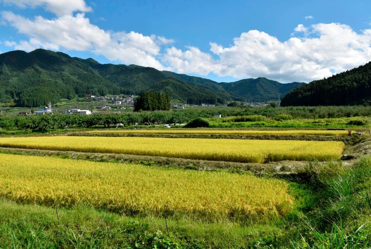 山ノ内町ユネスコエコパーク-farm-南部地区 里の風景