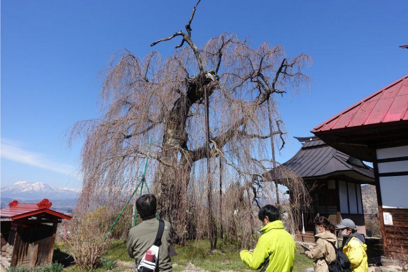 山ノ内町ユネスコエコパーク-localwork-2019志賀高原ユネスコエコパーク第1回セミナー開催