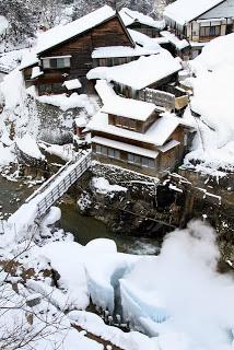 山ノ内町-museum-ロマン美術館「第2回スノーモンキー写真教室」