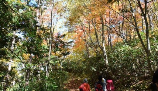 志賀高原自然観察会で新たな発見!
