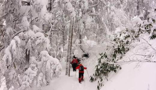 冬の志賀高原 自然探勝コース