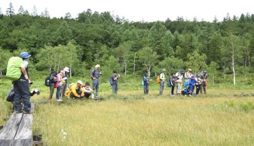 「身近な自然を冒険しよう」 高山村と山ノ内町の親子が参加